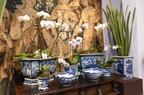 Primavera na Sandra & M�rcio (Exposi��o de vasos raros, cachep�s e floreiras, com pe�as do s�culo 19 da Europa e da �sia, integram a programa��o do Circuito DMAIS, na galeria Sandra & M�rcio, no Sion, em BH)
