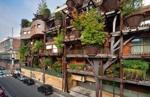 Arquiteto constrói casa na árvore em meio a paisagem urbana