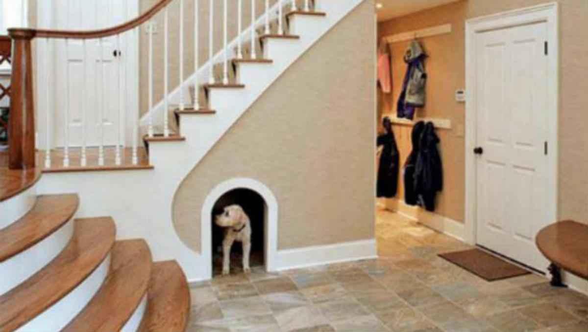 Casinha para cachorro no ambiente interno