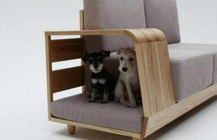 Sofá com casinha para cachorro