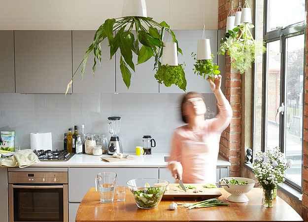 A dica é colocar os vasinhos pendurados na cozinha perto da pia e da janela - Boskke/Divulgação
