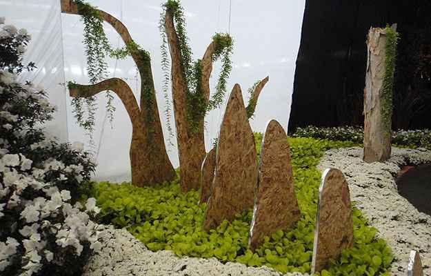 plantas jardim sensorial : plantas jardim sensorial:Paisagista cria jardim sensorial que desperta as mais diferentes