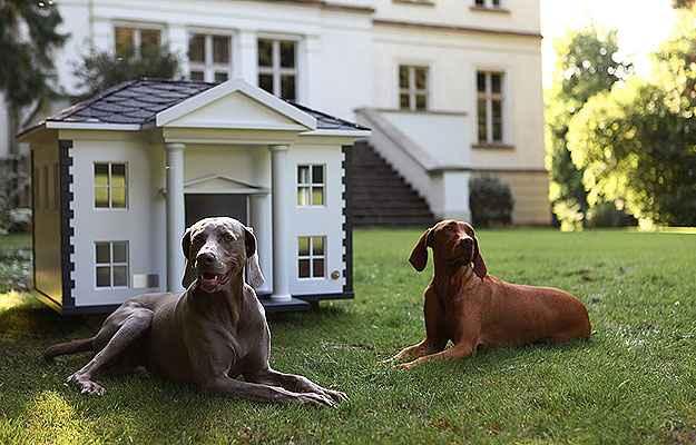 A casinha Alabama lembra as construções do Sul norte-americano - Best Friend's Home/Divulgação