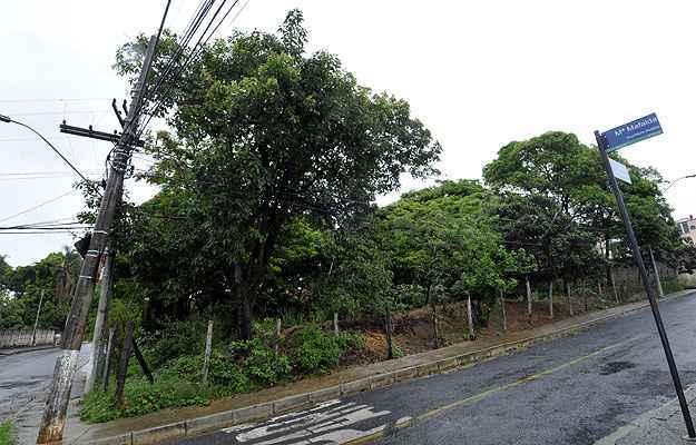 Ruas já urbanizadas no Bairro Novo Eldorado: infraestrutura pronta e diversos lotes disponíveis (Maria Tereza Correia/EM/D.A PRESS)