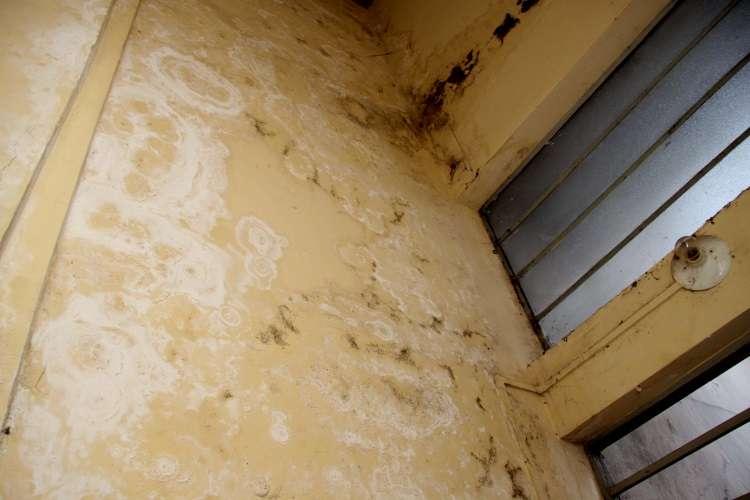 Vazamentos e infiltrações em condomínios geram dor de cabeça aos moradores