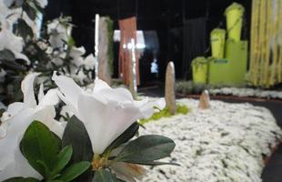 O Jardim dos Sentidos, criado pelo paisagista Raul Cânovas e sua equipe, foi planejado para despertar as mais diferentes emoções, de melancolia e tristeza, a prazer e alegria