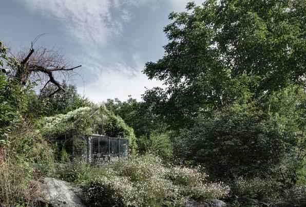 Esta casa na Itália é encoberta por uma rica vegetação e concebe um genuíno refúgio para relaxar. O projeto surgiu a partir da reforma de uma garagem e criou uma bela caixa verde em meio à natureza