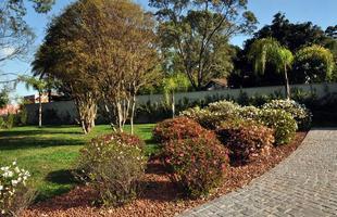 Folhagens são boa opção para quem não pode contar com o privilégio de ter árvores no jardim. Elas podem ser aplicadas em ambientes externos ou internos, mas escolhê-las requer ajuda profissional