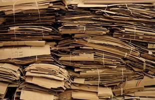 Arte e ecodesign são a base da estética criada pelo mineiro Domingos Tótora, que dá novas dimensões ao papel. Um livro que acaba de ser lançado exibe o projeto inovador desenvolvido pelo artista