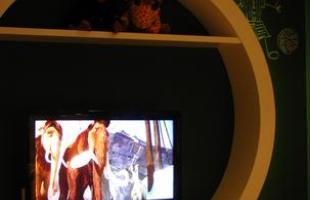 A mostra anual de decoração e design da Lider Interiores chega à 12ª edição, na capital mineira, com a temática hi-lo, que valoriza o equilíbrio entre opostos. Chique e econômico se unem em ambientes cheios de estilo e personalidade. Na foto, Quarto Infantil, projeto de Ana Claudia Navarro e Sylvia Thomaz Navarro