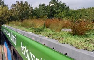 O paisagista Marc Grañen criou jardins itinerantes em tetos de ônibus na Espanha. As plantações são perfeitamente adaptáveis à cobertura dos veículos, concebendo áreas verdes móveis que podem melhorar a vida nas metrópoles