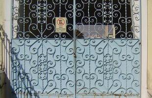 Artista plástica pesquisa variedade de grades que integram a paisagem urbana de BH. Ornamentos que marcaram época hoje estão jogados no ferro-velho. Pesquisa de Fernanda Goulart rendeu mais de 4 mil fotografias