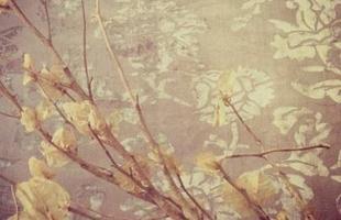 Tapetes vestem o piso com temas cada vez mais ao gosto do morador. Brasileiros se abrem para um leque de cores e estilos que passa longe do cinza, do bege e do cru, outrora badalados. Coleção da designer nova-iorquina Lina Miranda para a Square Foot exemplifica a tendência