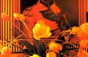 Famosíssimo por imprimir uma assinatura totalmente própria à decoração, baseada na mistura de estilos e referências diversas, e conhecido pela profusão de cores e matérias-primas, Sig Bergamin trilhou uma carreira sempre ascendente e bem -sucedida que já completa quase 40 anos. Na foto, projeto do profissional