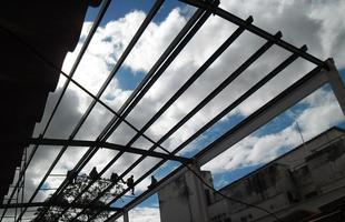 BH ganha loja com projeto arquitetônico 100% verde. Sandra Corrêa decidiu inovar nas novas instalações da Tetum: toda a construção do imóvel respeita conceitos de sustentabilidade e visa conquista de selo de certificação inédito no Estado