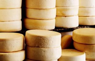 Culinária tradicional: queijo artesanal